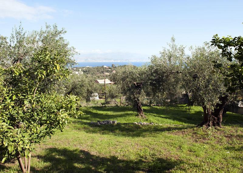 Villa Panagiota fenced garden